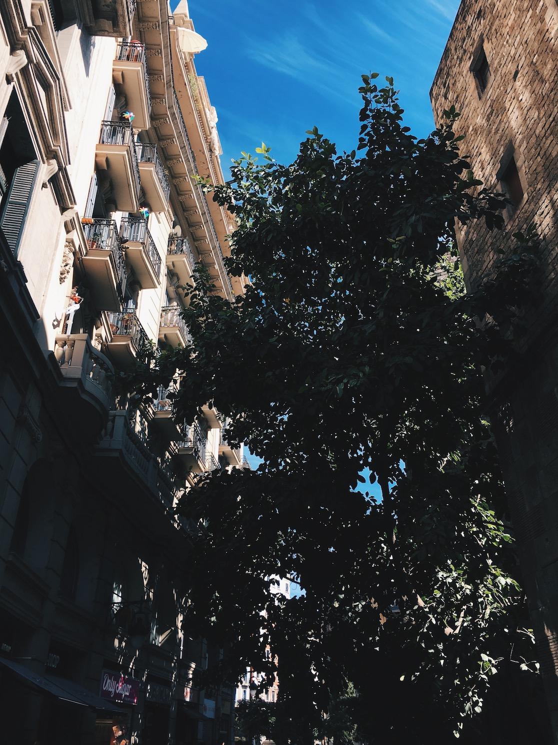 Découvrez les bonnes adresses gourmandes pour un week-end à Barcelone. Chaprgirl est un blog pour les entrepreneurs. Photo par Charlotte Laurent.