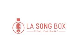 L'objet de ma collaboration avec La Song Box - Formation pour savoir mettre en place des collaborations avec les influenceurs et restructuration de la communication digitale