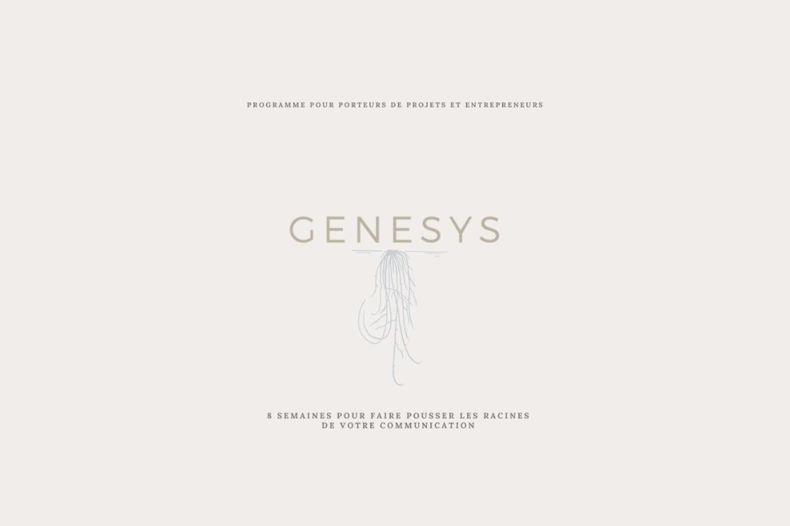 Genesys est un programme d'accompagnement pour entrepreneurs et porteurs de projets qui souhaitent connaître les bases d'une communication solide à long terme. Durant 8 semaines, on y voit toutes les racines d'une communication efficace.