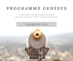 Programme Genesys - 8 semaines pour découvrir les racines de la communication de votre projet professionnel ou de votre entreprise par Chaprgirl