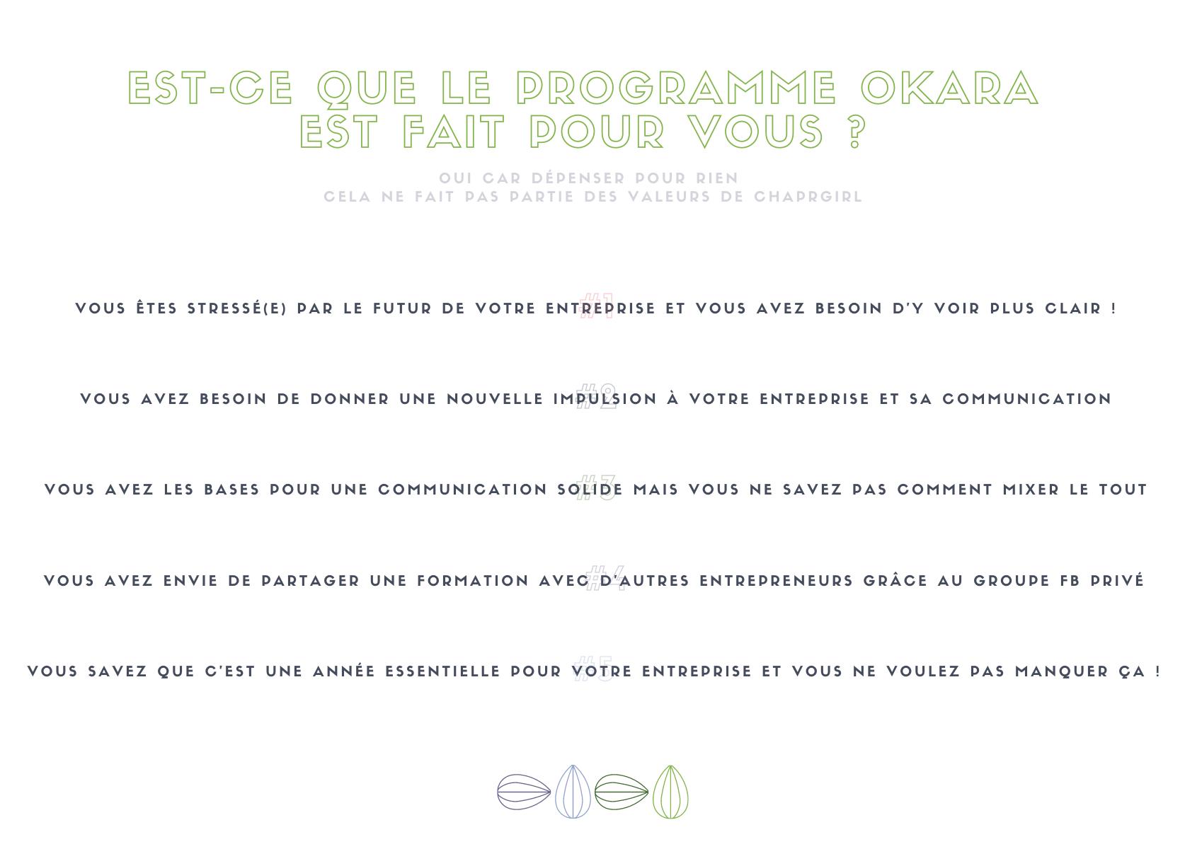 Le Programme d'accompagnement Okara est le programme qui vous aide à retrouver l'équilibre dans la gestion quotidienne de votre communication. Durant 4 semaines, nous voyons les 12 prochains mois en terme de stratégie de vos outils de communication.